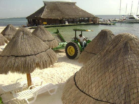 Holiday Inn Cancun Arenas : limpiando la playa