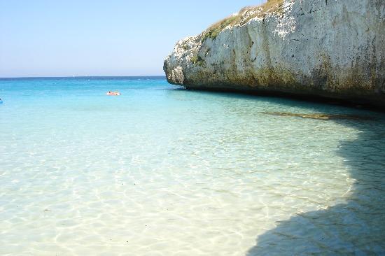 Club Hotel Tropicana Mallorca: vue de la plage......