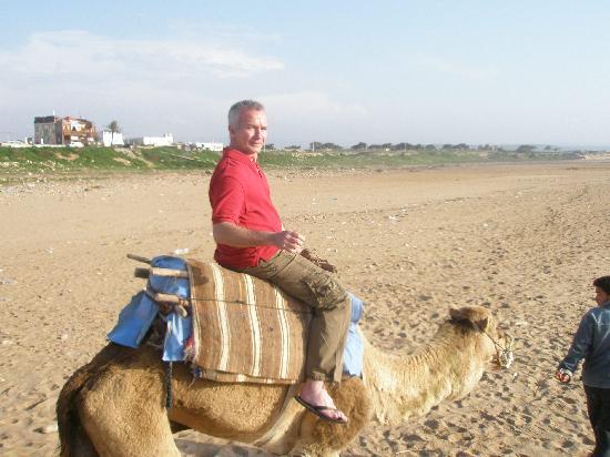 Hotel Villa Soleil : le tour de chameau sur la plage