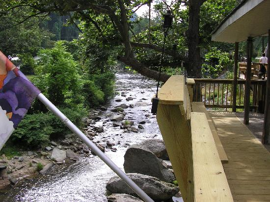 Bat Cave River Cottages : A view from the deck