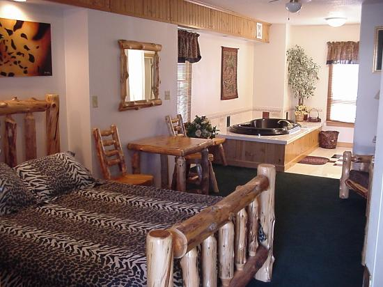 "Historical Park Motel: Our ""Leopard"" theme room w/jacuzzi"