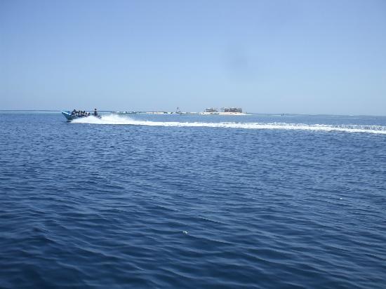 Grand Paradise Playa Dorada: paradise Island