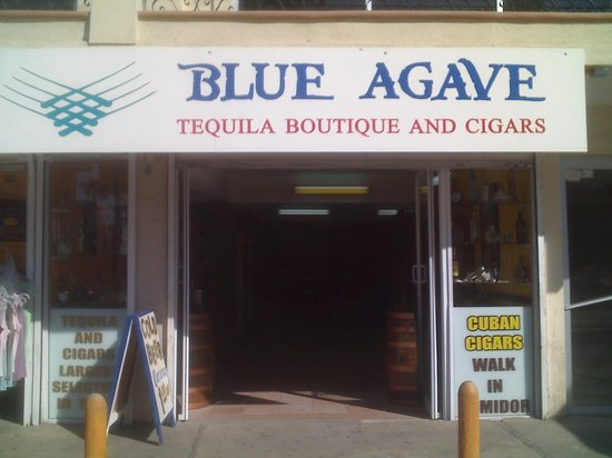 The Blue Agave : OUTSIDE