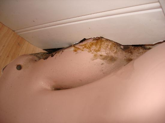 Hotel Concorde: behind toilet