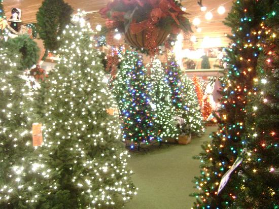 An enchanted Christmas forest! - Picture of Bronner's Christmas ...