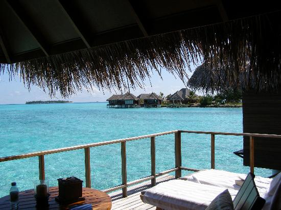 Taj Exotica Resort & Spa: The view from our room/house