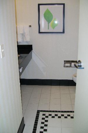 Fairfield Inn & Suites New Buffalo : bathroom