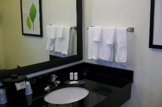 Fairfield Inn & Suites New Buffalo : bathroom counter