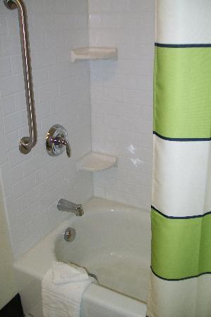 Fairfield Inn & Suites New Buffalo: tub
