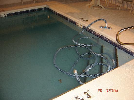 "Econo Lodge Gadsden: :Swimming"" pool (if you dare)"