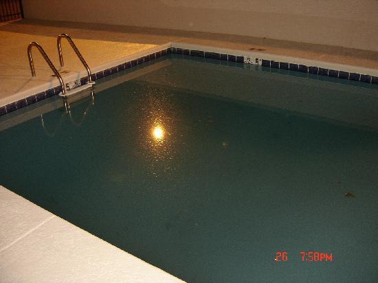 "Econo Lodge Gadsden: ""swimming"" pool #2 (if you dare)"
