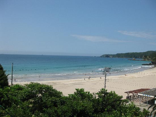 Shimoda Yamatokan: 電線は見えますが、海もとてもよく見えます