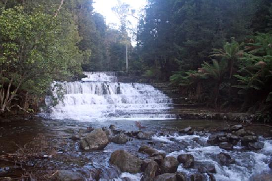 One of the cascades on the way to Liffey Falls