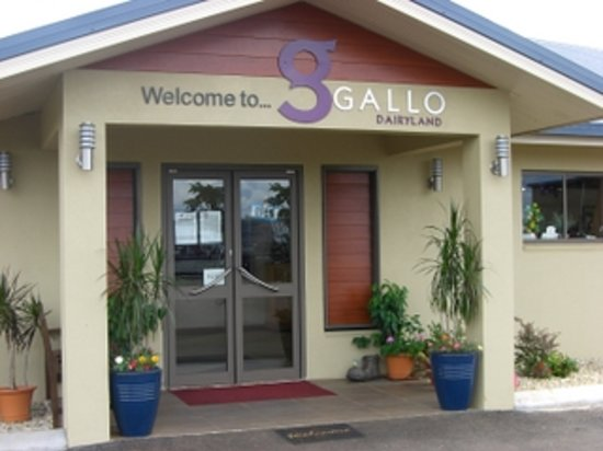 Gallo DairyLand: Gallo牧場