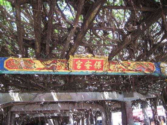 Hakusakyo Town