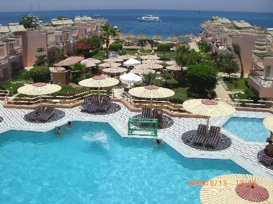 Beirut Hotel : Pool View