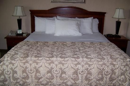 Red Lion Hotel Tacoma: King Bed