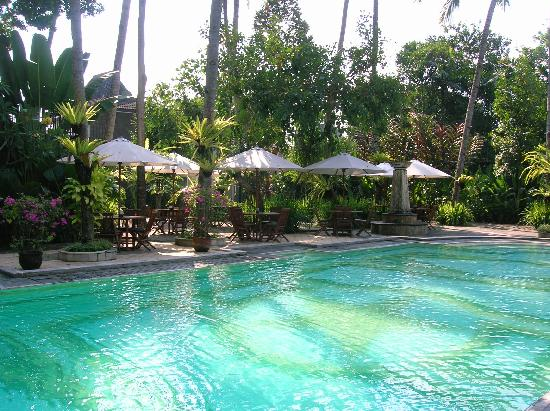 Saraswati Borobudur: Very serene pool surrounded by beautiful plants. Very relaxing.