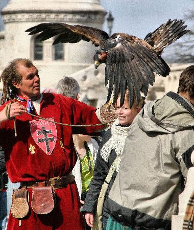 Kempinski Hotel Corvinus Budapest: Fisherman's Bastion - Falcon Man