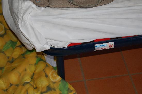Boschi di Montecalvi: Rete del letto