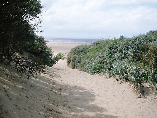 Yew Tree House: path to beach at berrow