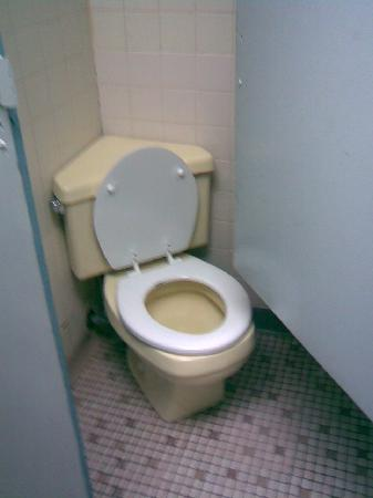 The Tap Room: Rarely seen corner toilet