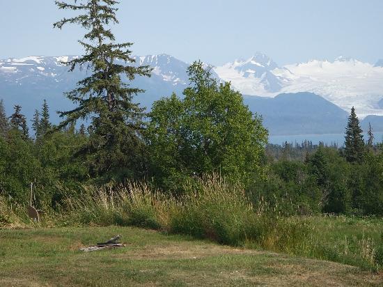 Crane's Rest B&B: view from backyard