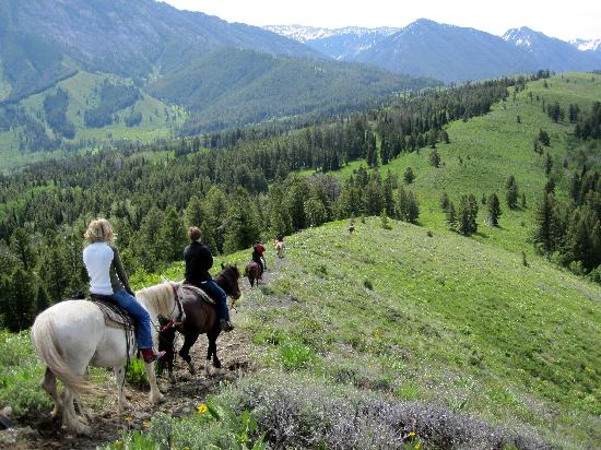 Spotted Horse Ranch: Our favorite horseback ride - the top of the Elk Ridge
