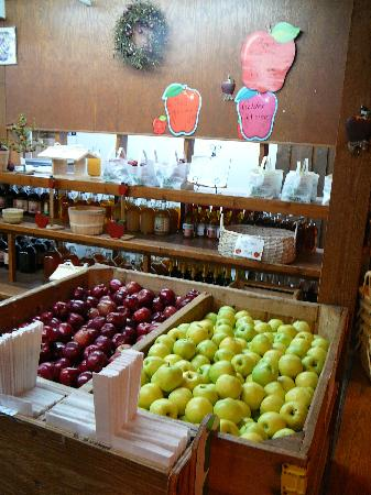 The Apple Barn Cider Mill And General Store: Apple Barn apples
