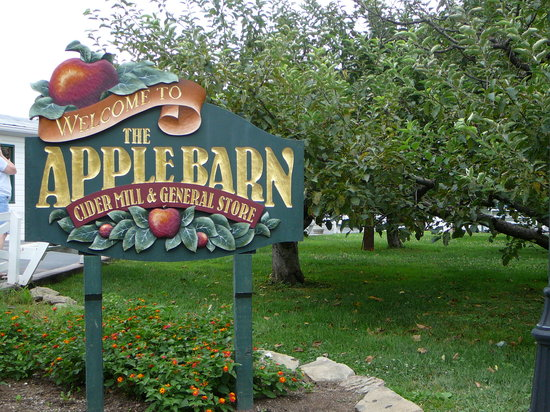 The Apple Barn Cider Mill And General Store: Apple Barn General Store Welcome sign & apple trees