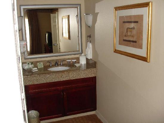 Homewood Suites By Hilton Charlotte Airport: Sink Area Inside Bedroom