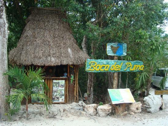 Boca Del Puma : Entrance