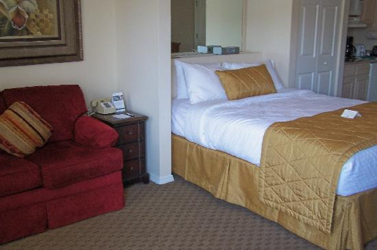 Suites at Fall Creek: Partial view of fold out sofa, bed and kitchenette in Studio Room