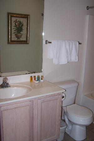Suites at Fall Creek: Small studio bathroom with inadequate lighting