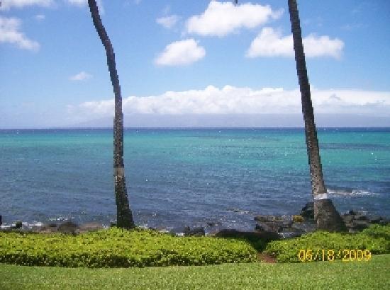 Noelani Condominium Resort: view taken from our room 106 looking straight ahead!