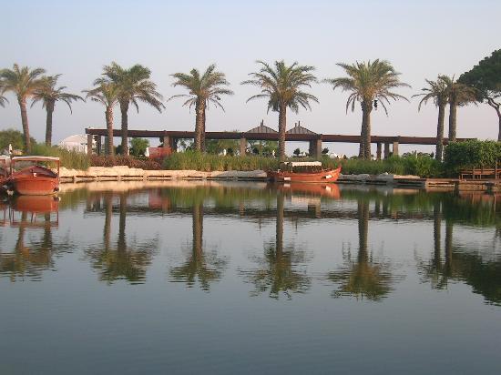 ريكسوس بريميوم: le canal
