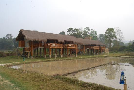 Diphlu River Lodge: Get your Malaria here!