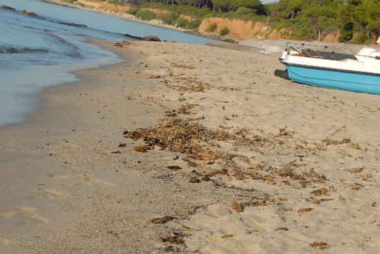 Is Morus Relais: Dirty beach