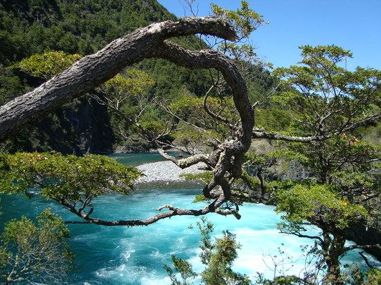 Parque Nacional Vicente Perez Rosales: remolino de agua