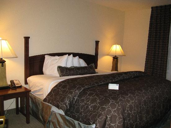Staybridge Suites Royersford-Valley Forge: King Bedroom Suite