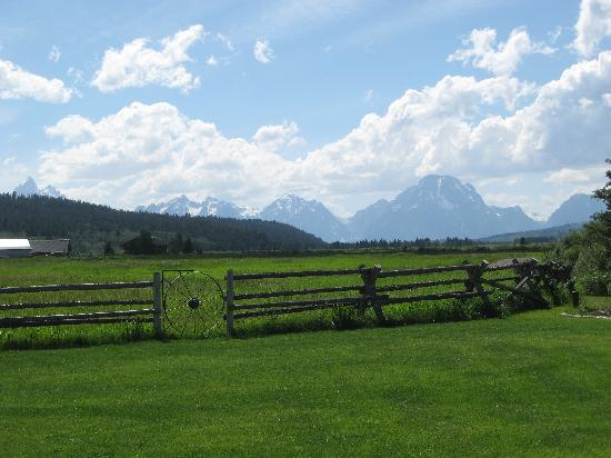 Luton's Teton Cabins: view from front yard