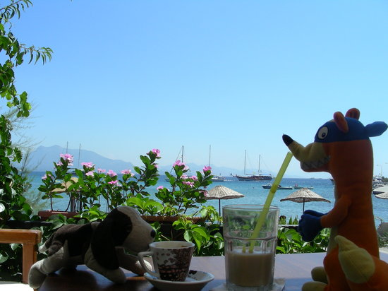 Cafe Inn: enjoying espresso and iced latte in Datca
