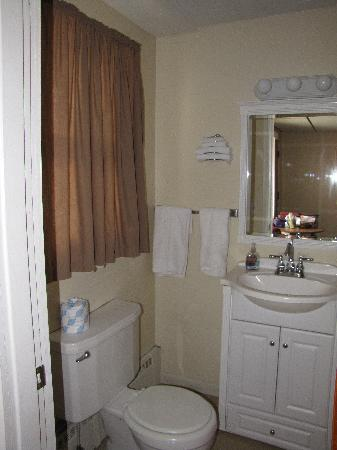 Flamingo Motel: Room 103 - toilet and sink