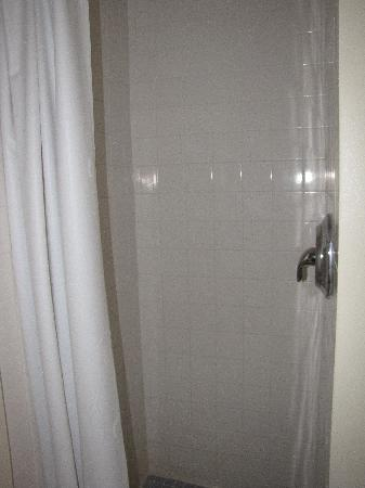 Flamingo Motel: Room 103 - small shower