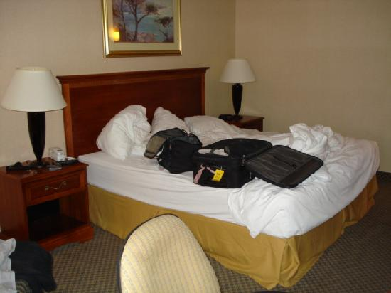 Quality Inn Spring Mills - Martinsburg North: Ok, our luggage and clothes on the bed