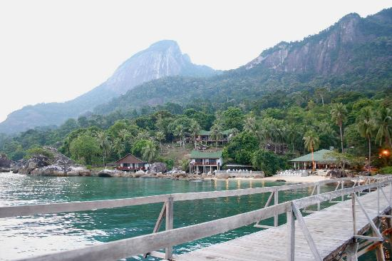 Minang Cove Resort: The resort as seen from the jetty.