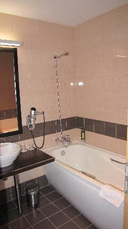 Hanza Hotel: bathroom 1