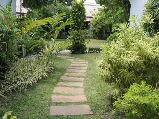 Samui Palm Beach Resort & Hotel: chemin accès à la villa pool