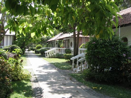 Samui Palm Beach Resort & Hotel: une autre partie de l'hôtel réservé aux villas