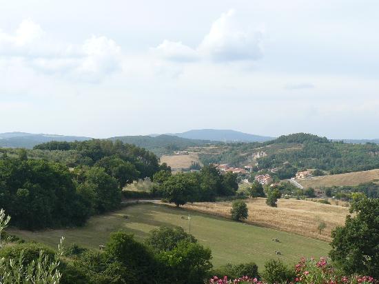 Podere Monti: vue depuis la piscine sur San Giminiano